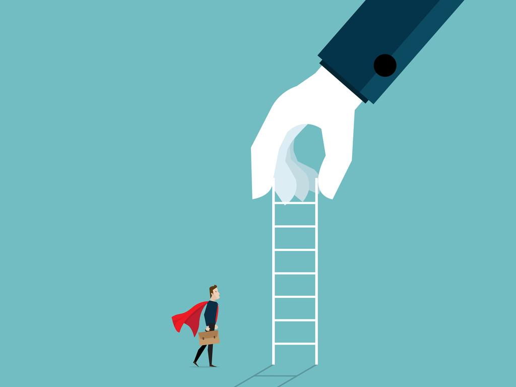 IT career ladder